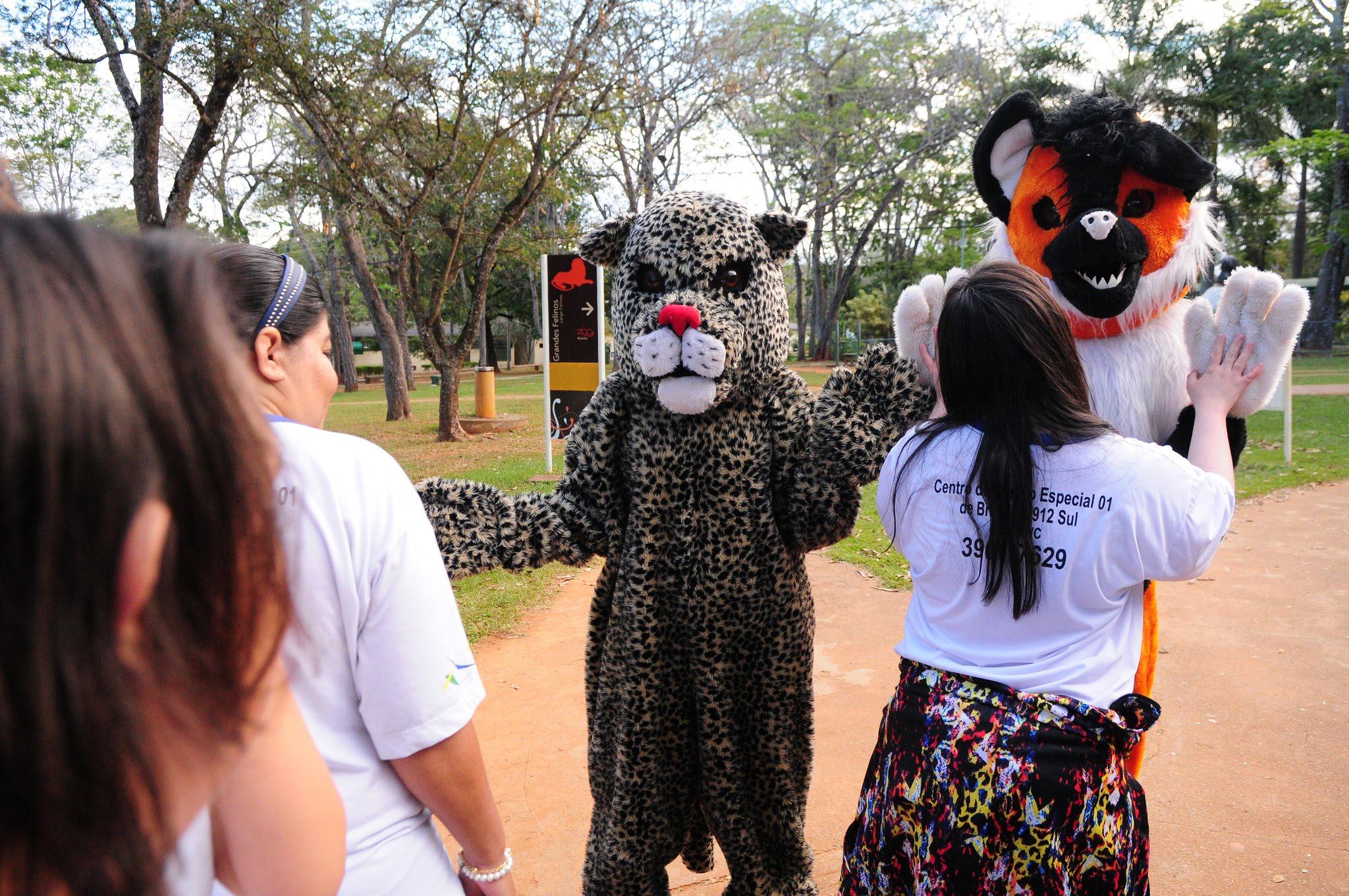 Realizada, em 2016, a reformulação do projeto Zoo com Vivência que visa proporcionar às pessoas idosas um contato mais próximo com a natureza, aliado à prática de atividades físicas e recreativas. Foram realizados 776 atendimentos nos anos de 2016 e 2017.