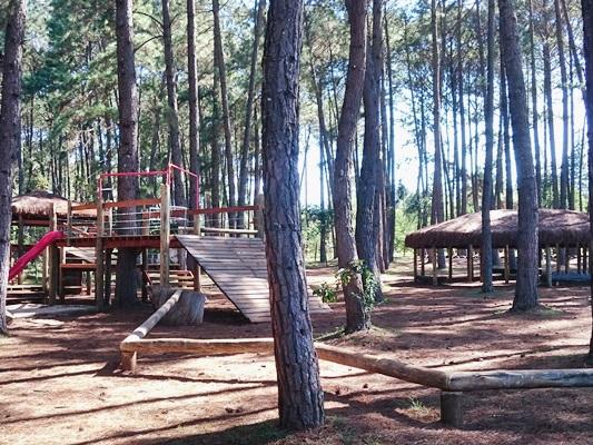 Implantados, desde 2017, novos equipamentos no Jardim Botânico de Brasília:<ul>     <li>Construídas três estufas para plantas, ampliando o acervo de coleções vivas</li>     <li>Construído parque temático infantil com brinquedos educativos</li>     <li>Construídos banheiros e fraldário</li>     <li>Ampliado e reformado o anfiteatro</li>     <li>Ampliada e reformada a portaria privativa</li> </ul>