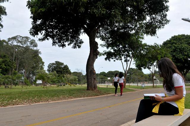 """Criado o Programa Brasília nos Parques, por meio do Decreto nº 37.115/2016 (<a href=""""http://www.sema.df.gov.br/wp-conteudo/uploads/2017/09/Decreto-Distrital-n%C2%BA-37.115-de-2016.pdf"""">link aqui</a>), com a finalidade de aprimorar o uso público dos parques e unidades de conservação do Distrito Federal, por meio de parcerias entre o Governo do Distrito Federal, organizações da sociedade civil e do setor produtivo, oferecendo serviços e atividades públicas voltadas à saúde, educação, esportes, turismo, cultura, trabalho e assistência social, dentre outros, a fim de melhorar a qualidade de vida da população do Distrito Federal. A partir do Programa, foram estruturados os seguintes projetos:  <ul>     <li>Parque Educador, lançado em 06/03/2018, em parceria com a Secretaria de Educação e com o Instituto Brasília Ambiental - Ibram, que tem como foco principal o receptivo de alunos da rede pública do DF, do ensino integral, para realizar ações de educação ambiental e patrimonial nos Parques e Unidades de Conservação. As atividades são desenvolvidas por professores especializados. Até outubro/2018 foram realizados 10.351 atendimentos </li>     <li>Feira nos Parques, lançado em 16/06/2018, em parceria com a Secretaria de Agricultura, Abastecimento e Desenvolvimento Rural - Seagri e com o Ibram, que trata o desenvolvimento de atividades de feiras orgânicas em 03 (três) parques do Distrito Federal: Águas Claras, Olhos D água e Bosque Sudoeste. O objetivo é estimular a população do DF a frequentarem os parques, movimentar a economia local e inserir produtos rurais e orgânicos na dieta dos brasilienses. São atendidas 980 pessoas por mês</li>     <li>Projeto piloto de segurança para o Parque Saburo Onoyama, em parceria com a Secretaria da Segurança Pública e da Paz Social - SSP e com o Ibram</li> </ul>"""