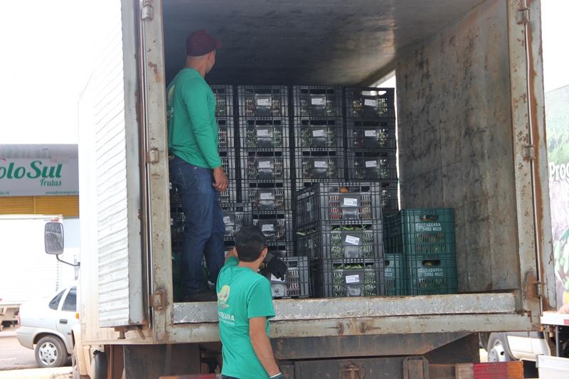 Implantado, em 2016, programa modelo de compras diretas do produtor rural, em 26 unidades públicas de ensino do Recanto das Emas.