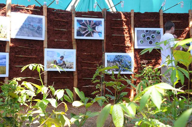 Realizadas, em 2015, 2016 e 2017, três edições da Virada do Cerrado, voltadas para aumentar o protagonismo e sensibilização nas ações de proteção e recuperação, com foco na produção de água: <ul>     <li>Em 2015, a Virada do Cerrado, aconteceu em 21 Regiões Administrativas do Distrito Federal. Foram  120 ações e 200 atividades socioambientais, educativas, esportivas e culturais espalhadas por todo o território. Estima-se que 20.000 pessoas foram envolvidas diretamente e 355.505 pessoas envolvidas indiretamente, por meio de redes sociais e outras mídias</li> <li>Em 2016, aconteceu em 28 Regiões Administrativas do Distrito Federal, além de uma atividade realizada em Padre Bernardo-GO. O tema deste ano foi Mudança Climática. Foram mais de 80 organizações articuladas em 220 ações e aproximadamente 530 atividades socioambientais, educativas, esportivas e culturais espalhadas por todo o território. Estima-se que 50.000 pessoas foram envolvidas diretamente e 508.939 pessoas envolvidas indiretamente, por meio de redes sociais e outras mídias</li> <li>Em 2017, aconteceu em 27 Regiões Administrativas do Distrito Federal. O tema deste ano foi Água. Foram mais de 80 organizações articuladas em 99 ações e aproximadamente 340 atividades socioambientais, educativas, esportivas e culturais espalhadas por todo o território, com participação de milhares de pessoas. Estima-se que 30.000 pessoas foram envolvidas diretamente e 220.000 pessoas envolvidas indiretamente, por meio de redes sociais e outras mídias</li> </ul>